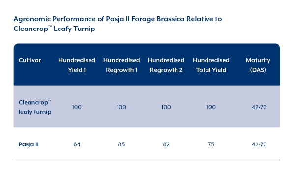 Agronomic Performance of Pasja II Forage Brassica Relative to Cleancrop™ Leafy Turnip